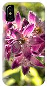 Pink Ladies In Spring Glory IPhone Case