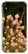 Pink Mountain Laurel Buds IPhone Case