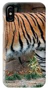 Pink Nosed Tiger IPhone Case