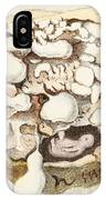 Placenta With Tumors, Illustration, 1836 IPhone Case