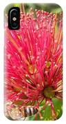 Pohutukawa Flower  IPhone Case