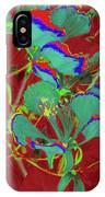 Poinciana Flower 9 IPhone Case