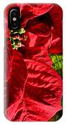 Poinsettias - Flaming Reds IPhone Case