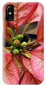 Poinsettias -  Pinks In The Center IPhone Case