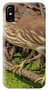 Pond Heron With Fish  IPhone Case