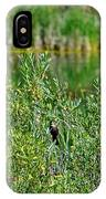 Pond On Cherry Creek Study 2 IPhone Case