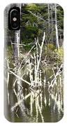 Pond Sticks IPhone Case