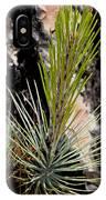Ponderosa Pine 9 IPhone Case