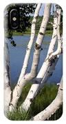 Pontook Birch IPhone Case