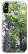 Poplar Tulip Tree IPhone Case