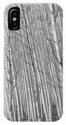 Poplars Beauty Trees IPhone Case