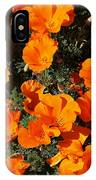 Poppies Alive IPhone Case