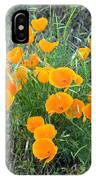 Poppies II IPhone Case