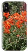 Poppies In Springtime IPhone Case
