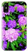 Pops Of Purple IPhone Case