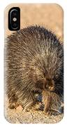 Porcupine Walking IPhone Case