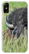 Portrait Of A Bison IPhone Case