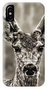 Portrait Of A Male Deer II IPhone Case