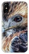 Portrait Of A Red-tailed Hawk IPhone Case