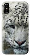 Portrait Of A Snow Leopard IPhone Case