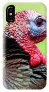 Portrait Of A Tom Turkey IPhone Case