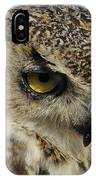 Portrait Of An Owl.  IPhone Case