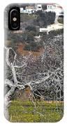 Portuguese Almond Plantation IPhone Case