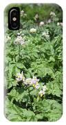 Potato Flower Agriculture Spring Scene IPhone Case