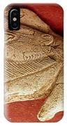 Prehistoric Bison Carving IPhone Case