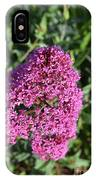 Pretty Blooming Pink Phlox Flowers In A Garden IPhone Case