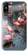 Pretty Flamingoes IPhone Case