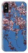Pretty In Pink - A Flowering Cherry Tree And Blue Spring Sky IPhone Case