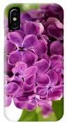 Pretty Lilac Bush IPhone Case