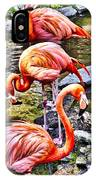Pretty Pink Flamingos IPhone Case