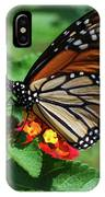 Pretty Spots IPhone Case