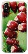 Prickly Pear Fruit IPhone Case