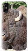 Prim And Proper Bison IPhone Case