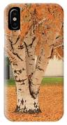Prosser - Autumn Birch Trees IPhone Case