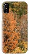 Prosser - Fall Foliage IPhone Case
