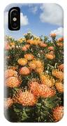 Protea Blossoms IPhone Case