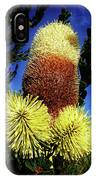 Protea Flower 5 IPhone Case