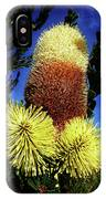 Protea Flower 5 IPhone Case