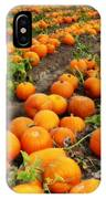 Pumpkin Patch IPhone Case