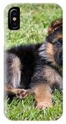 Puppy In The Spring IPhone Case