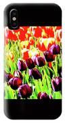 Purple And Peach Tulips 2 IPhone Case