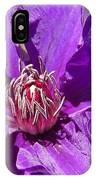 Purple Clematis IIi IPhone Case