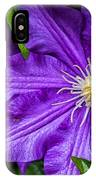 Purple Clematis IPhone Case