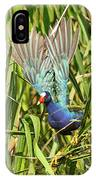 Purple Gallinule In Flight IPhone Case