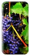 Grapes IPhone X Case