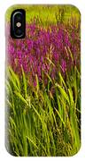 Purple Loosetrife And Cat-tails IPhone Case